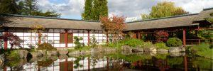 nuageux-automne-parc-japonais