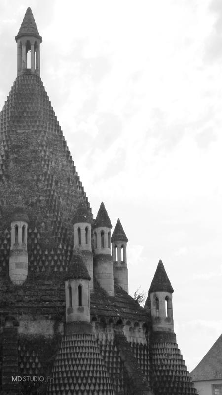 Toitures en formes de pins | Abbaye de Fontevraud 2013 | MDstudio
