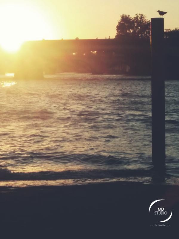 Heure dorée en bord de Seine | Paris | MDStudio