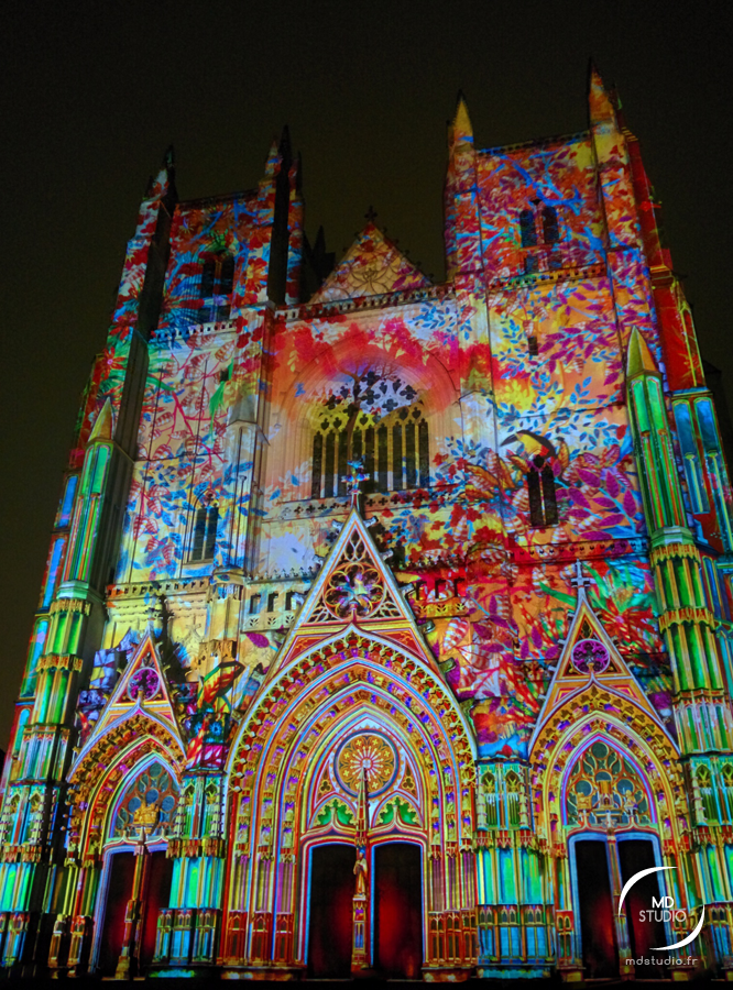 Cathédrale de Nantes | illumination florale en projection | MDstudio