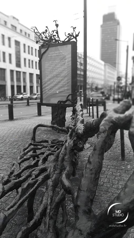 Vue du banc de branches et de troncs