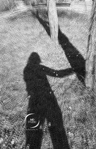 photographie en noir et blanc, projection ombre, silhouette humaine & tronc d'arbre, herbe et pâquerettes | photo MDstudio
